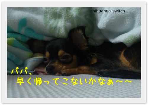 20121025004.jpg