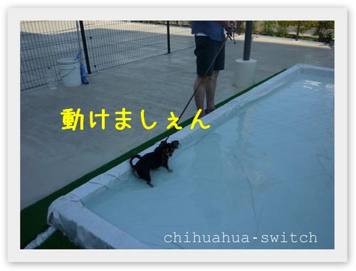 cs20120811002.jpg