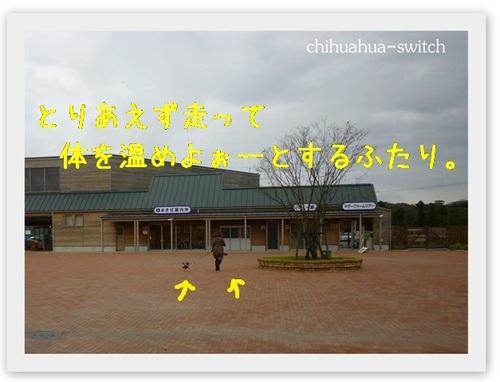 cs20121008002.jpg
