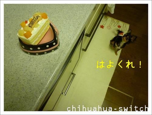 cs20130429002.JPG