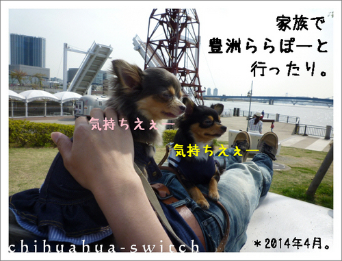 cs20141006001 (2).JPG