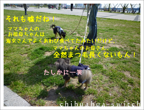 cs20141006002 (3).JPG